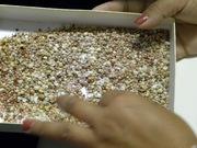 select shells